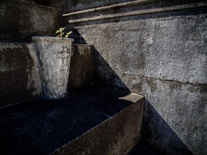 图片:达琳·希尔德布兰德(拍摄于尼加拉瓜格拉纳达)