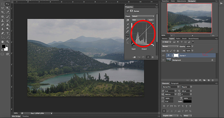Curves- How to Take Control of Contrast Using Curves and Levels in Photoshop
