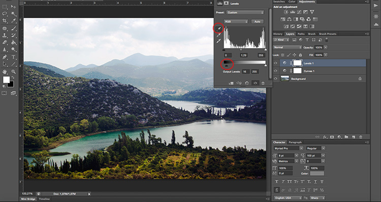 Levels Black - How to Take Control of Contrast Using Curves and Levels in Photoshop