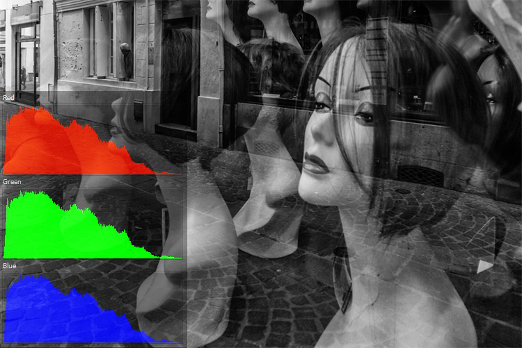 Black and white photo with RGB histograms. How to do Color Correction Using the Photoshop Curves Tool