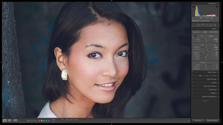 Lightroom Develop Presets for portraits