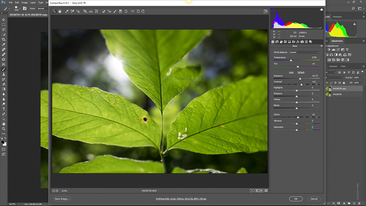 How to do a Quick and Easy Orton Effect in Photoshop