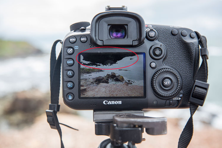 10 Things You Can Learn from the Pros to Help You Take Better Photos