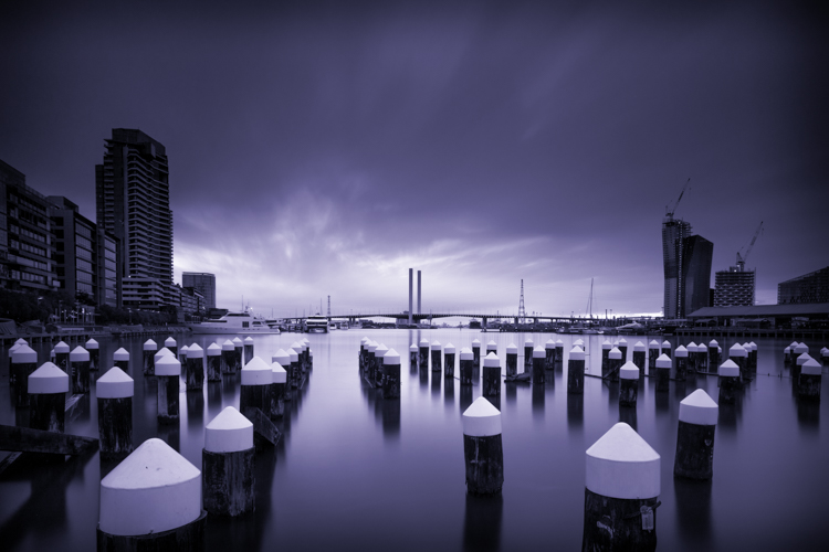 Tips for Learning How to See in Monochrome - purple tone