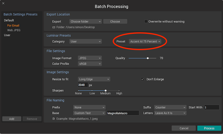 How to Speed up Your Workflow Using the Accent AI Filter in Luminar to do Batch Processing