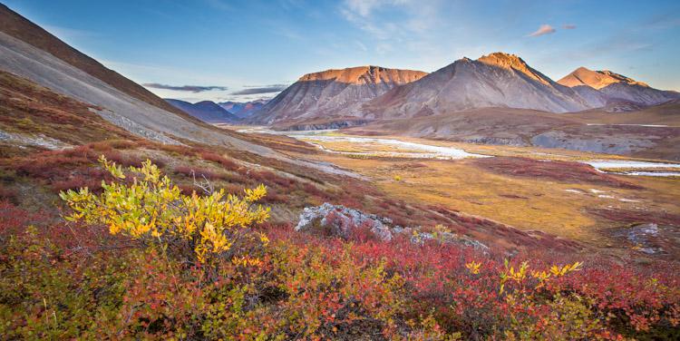 4条提示,以帮助您更好地拍摄秋季照片