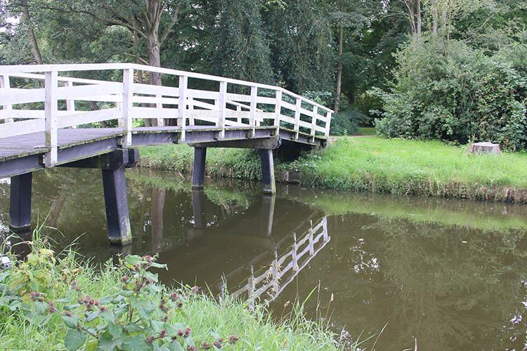 Bridge Reflective - How to Understand Reflected Versus Incident Light and Get More Accurate Exposures