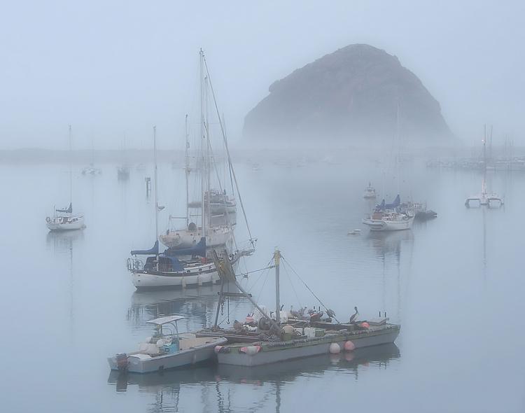 foggy, overcast lighting Morro bay