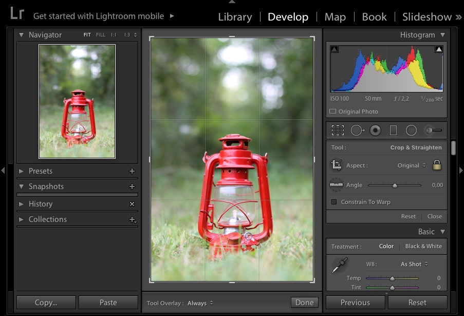 LR showing how to crop an image - How to Break the Rules with a central composition