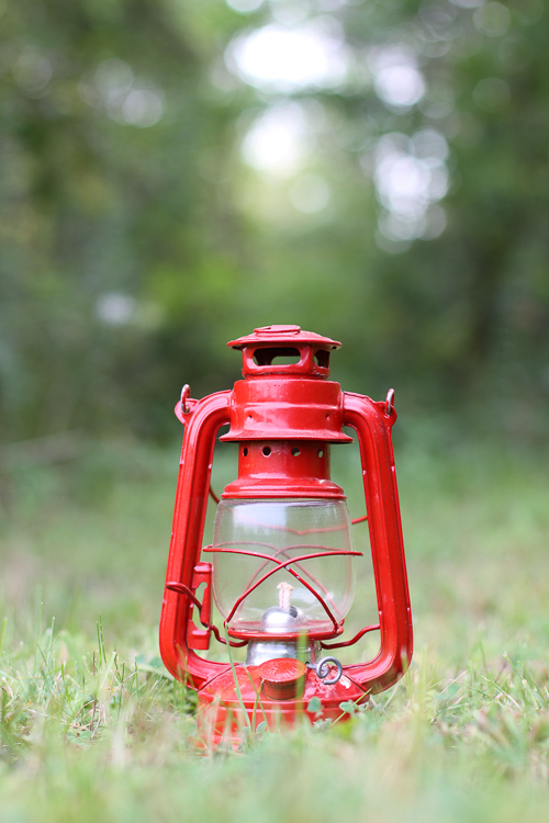 A lantern on a forest path How to Break the Rules with a central composition