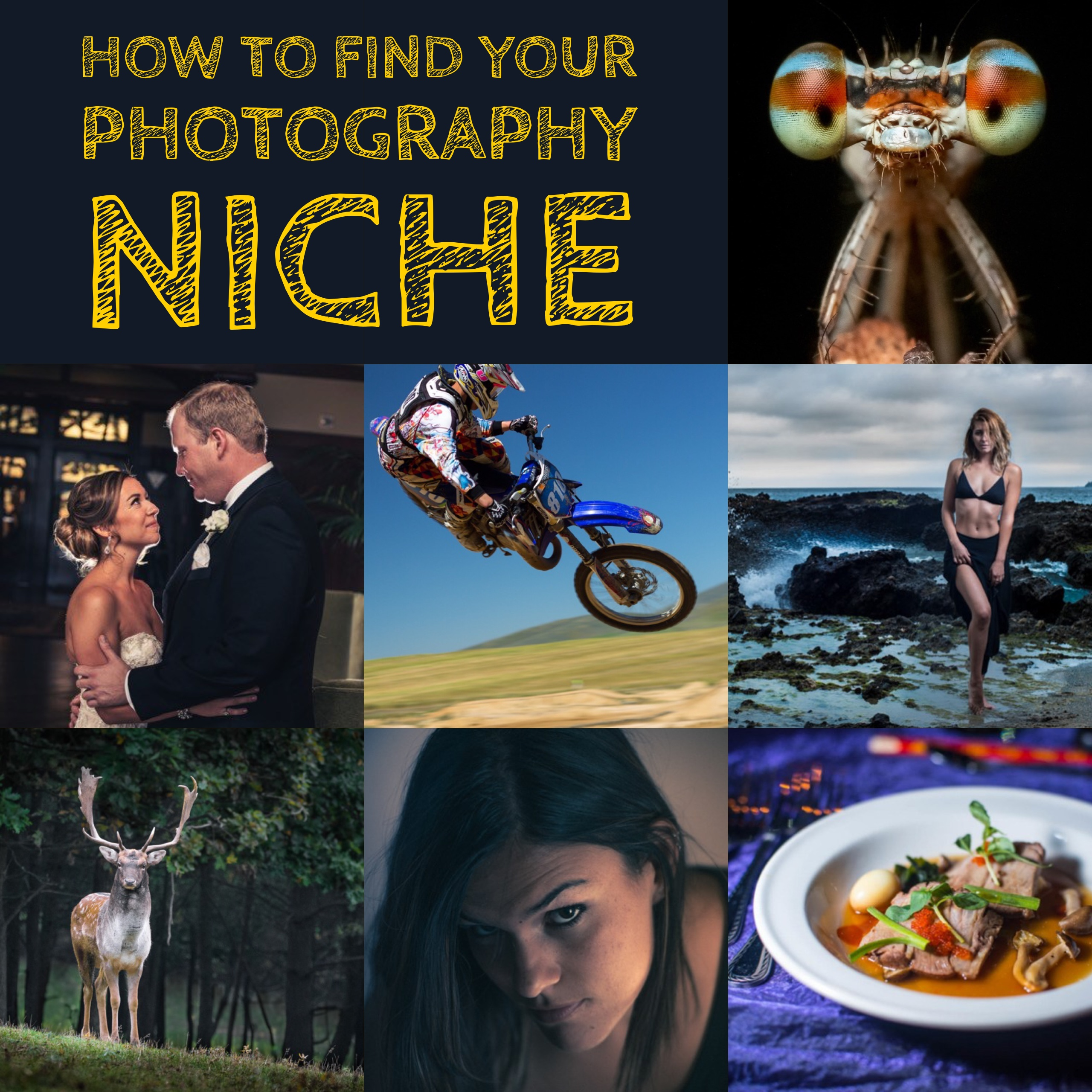 How to Find Your Photography Niche