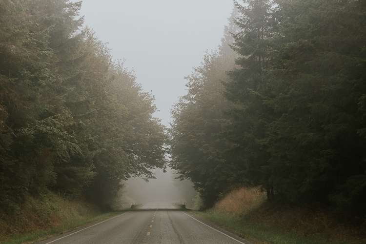 Photographing landscapes in any weather - fog