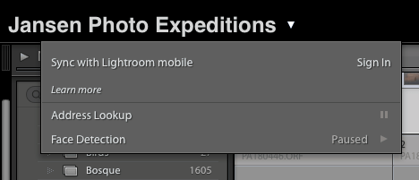 Lightroom Mobile - The Secret to Shooting and Editing on Your Smartphone