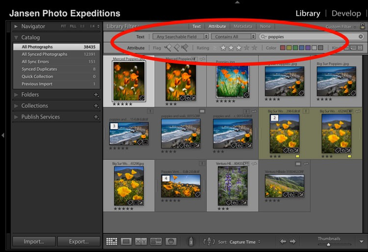 Why Lightroom KeyWords and Star Ratings are Important for Your Photography Workflow