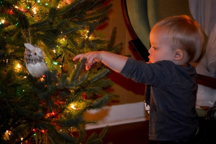 Better Christmas photos 14