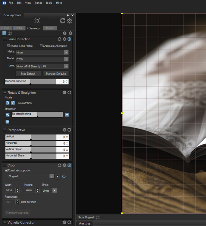 Image: The Geometry panel is accessed via a tab at the top of Develop Tools. Here, you can crop and...