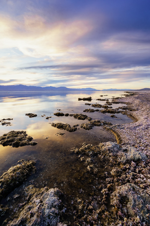 Salton Sea, California by Anne McKinnell - How to Make Storytelling Landscape Photos