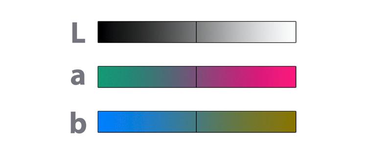 17 lab graphic