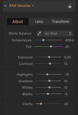 Cappuccino Luminar 2018 RAW Develop Settings Adjust