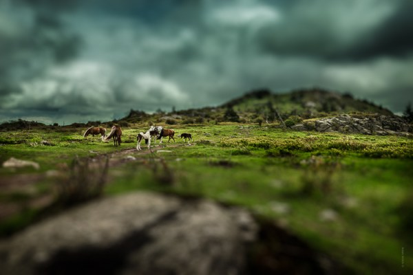 How to Easily Simulate a Tilt-Shift Effect Using Photoshop