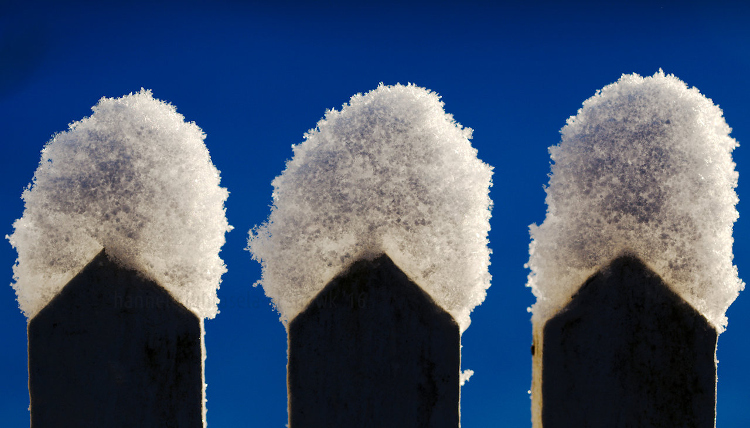 https://i2.wp.com/digital-photography-school.com/wp-content/uploads/2018/01/10-winter-photography-tips.jpg?resize=750%2C428&ssl=1