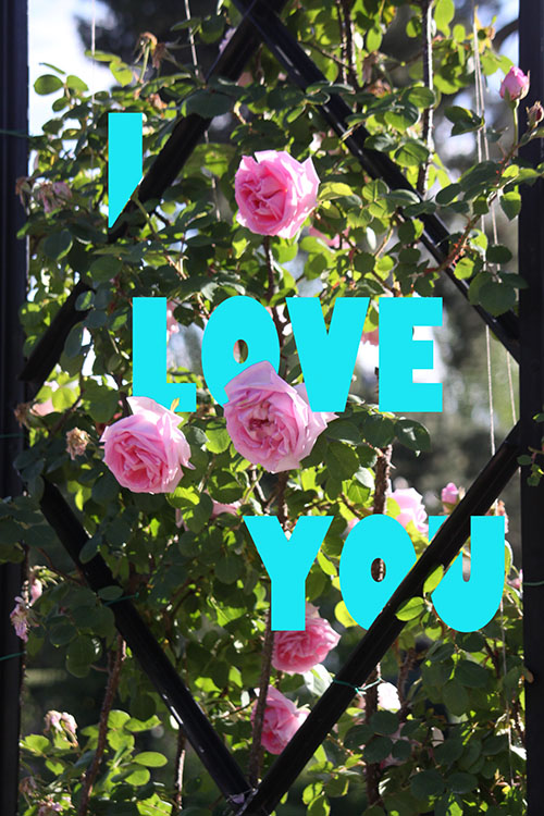 I love you - How to Use Layers and Masks to Add Text to Your Photos