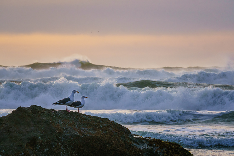 Big surf on the Oregon Coast. Getting Started with Landscape Photography - 4 Easy Tips for Beginners
