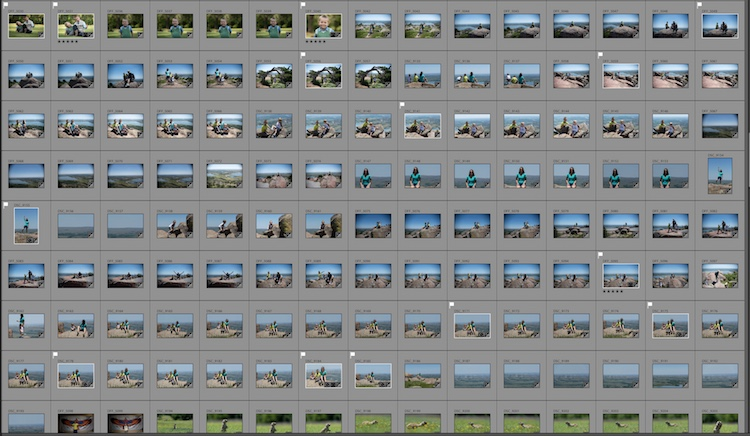 RAW Versus JPEG - Which one is right for you and why?
