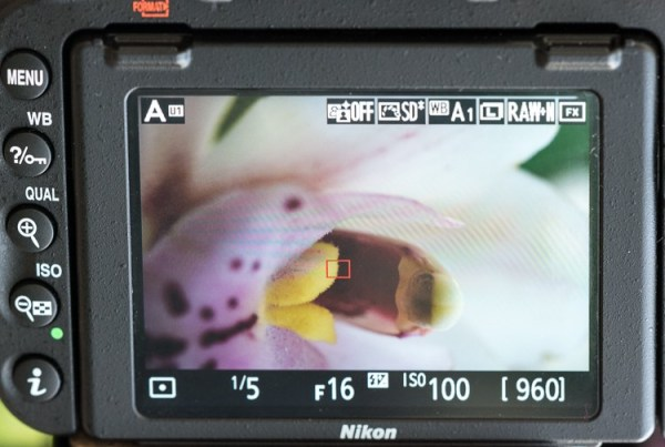 A Guide to Working with Different Focal Lengths for Macro Photography