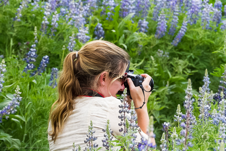 Girl in flowers taking a photo - Tips for Making Your Travel Photography Packing List for International Trips