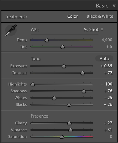 Image: Here are the settings I used in the Basic panel.