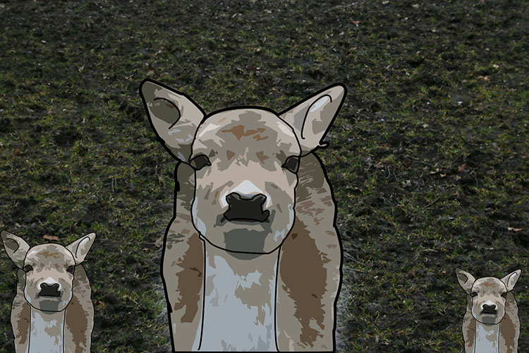 Three deers - How to Turn Your Photo into a Cartoon Drawing Using Photoshop