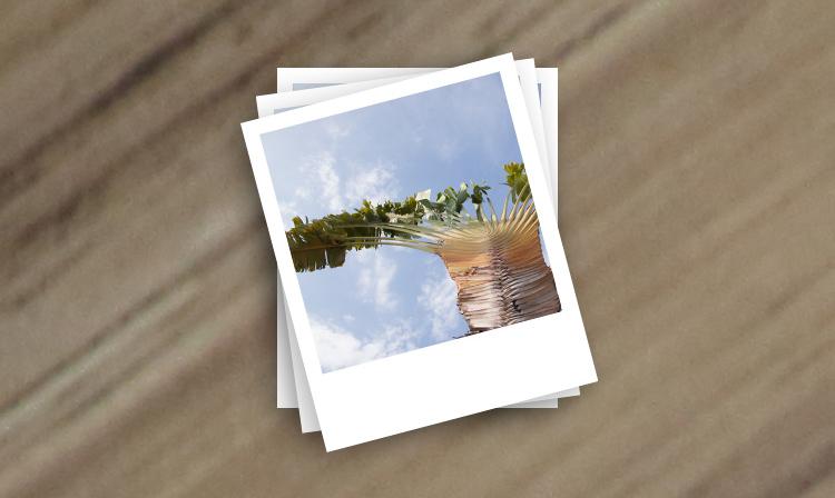 Digital to Polaroid Effect tutorial