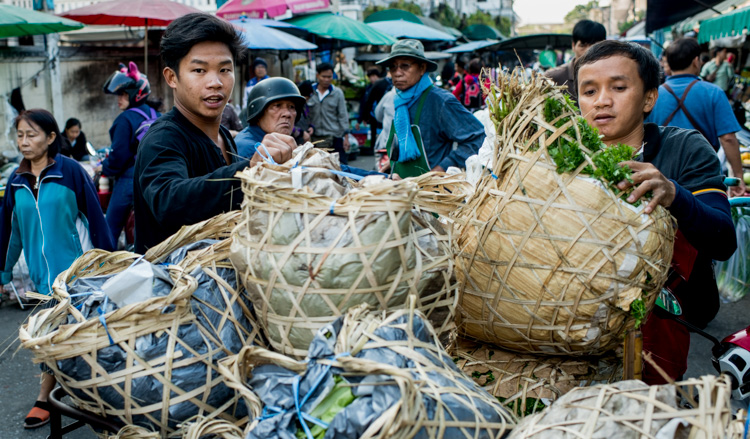 Unloading produce at a market in Chiang Mai, Tips for Learning How to See the Light and Take Better Photos