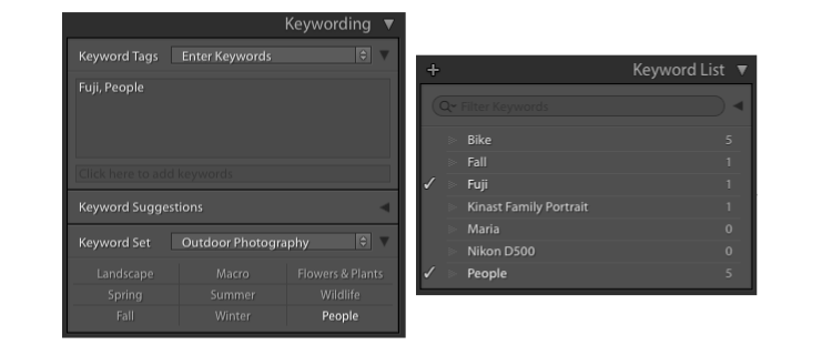 4 Tips to Organize Your Photos in Lightroom - keywords