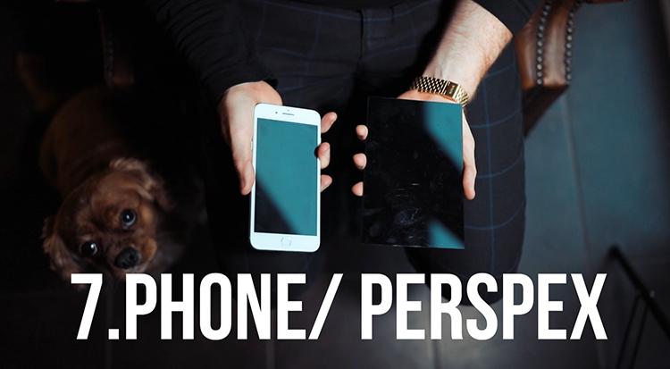 Phone reflection - 10 Amazing Camera Hacks for Dog Photography