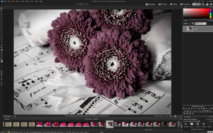 How to Edit Using Layers with ACDSee Ultimate Photo Studio 2018