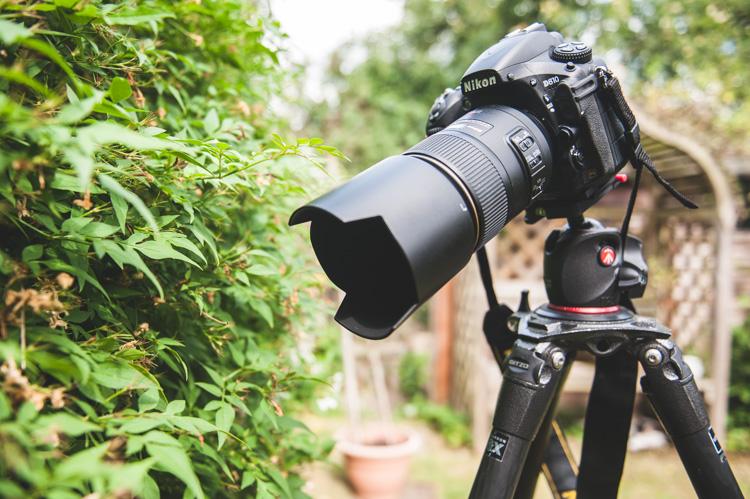 Macro lens and camera - patterns