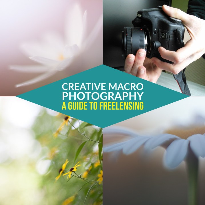 Creative Macro Photography - A Guide to Freelensing