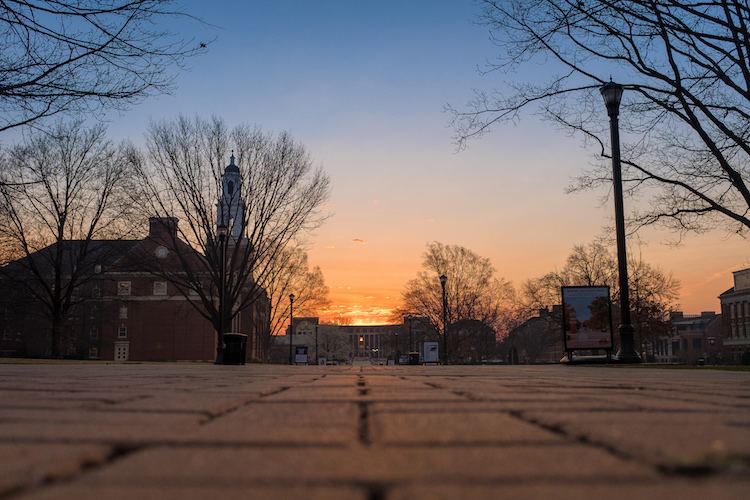 Optical Versus Electronic Viewfinders - low angle sunset shot