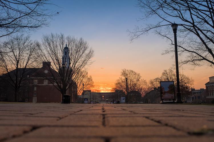 low angle sunset shot
