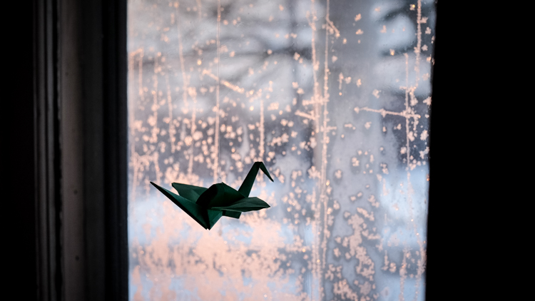 Frosty window silhouette - How to Simplify Your Life as a Photographer
