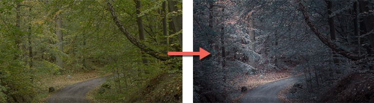 What Makes Great Photos? 5 Factors That Can Take Your Images From Good to Great - before and after editing