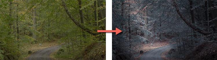 什么使伟大的照片?可以将图像从优到大的5个因素 - 编辑之前和之后