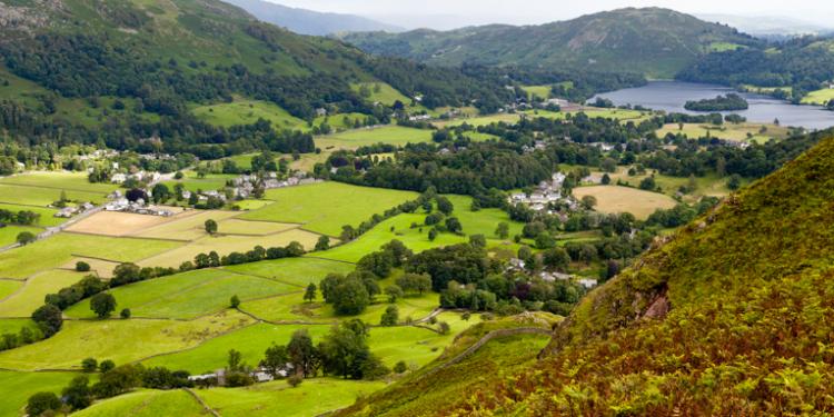 green landscape scene - 5 Framing Tricks to Help You Capture Better Landscape Photos