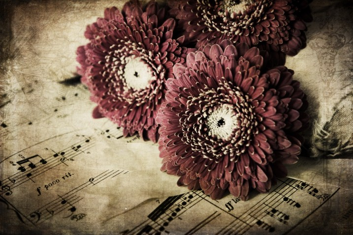 textured image of flowers - How to Edit Using Layers with ACDSee Ultimate Photo Studio 2018