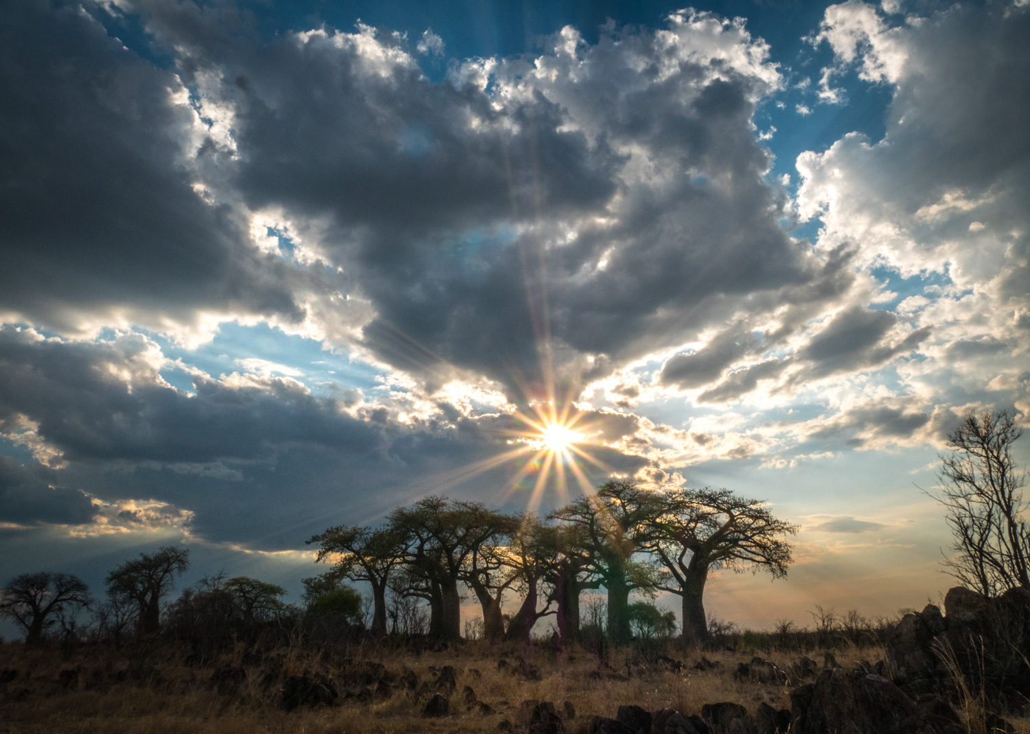 sun burst over trees in Africa - Five (More) Uncomfortable Truths About Photography