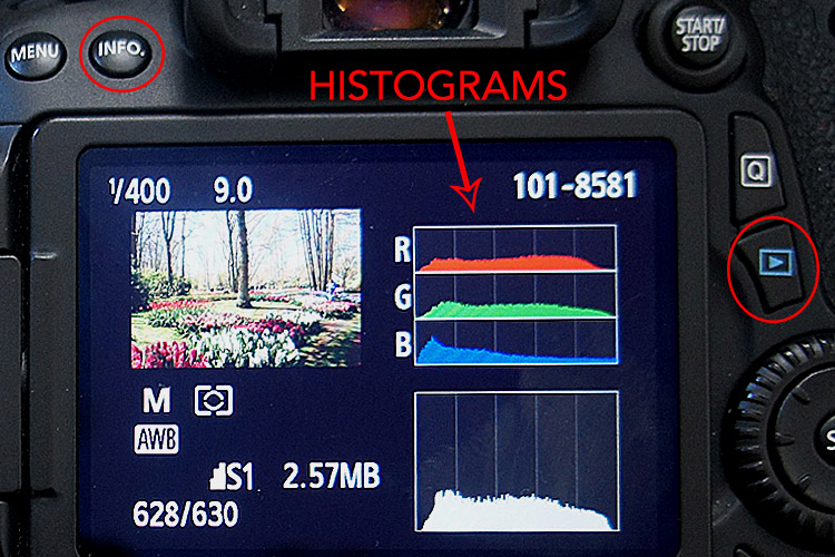 Chimping Tutorial Histogram In Camera Review