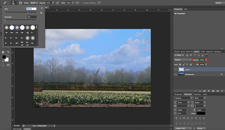 Paste sky Photoshop tutorial erase opacity
