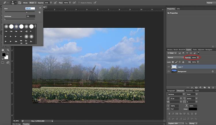 Paste sky Photoshop tutorial erase opacity